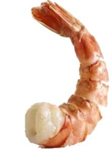 2010_04_30_oil_spill_shrimp