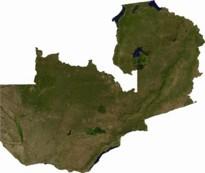 Zambia 205