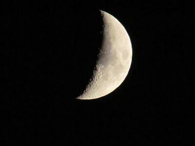 Half Moon HD-4