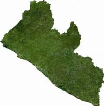 Liberia Satellite 215