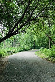 2013_05_13_Jackson Park