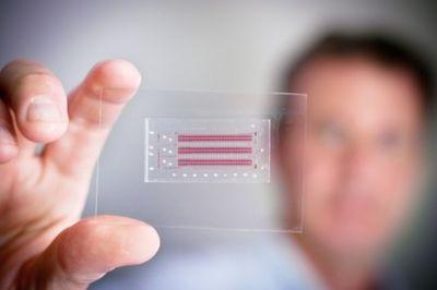 2014_01_10_HIV DNA Chip